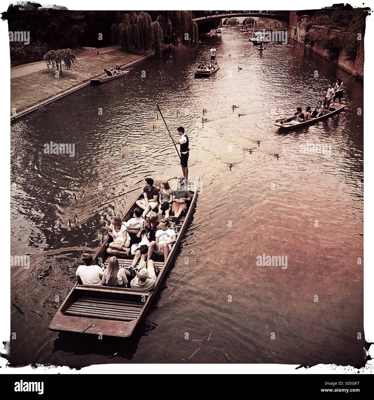 Cambridge punting in the summer, UK - Stock Image