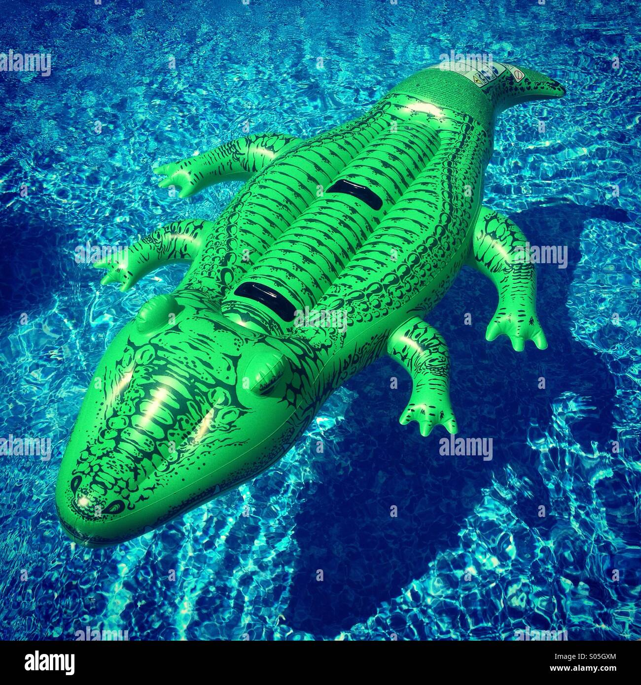 Inflatable Alligator Floating Above Its Shadow In The Pool.