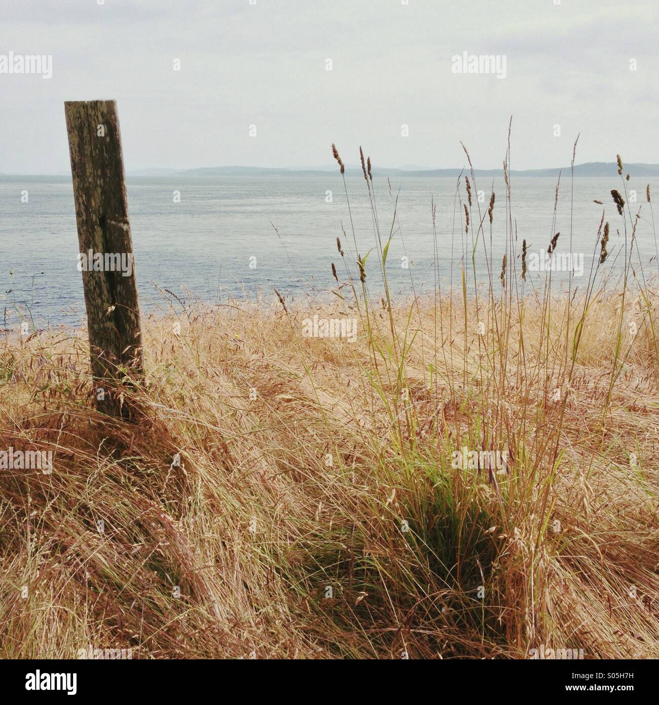 Minimalist landscape with grasses and post overlooking ocean water and islands - Stock Image