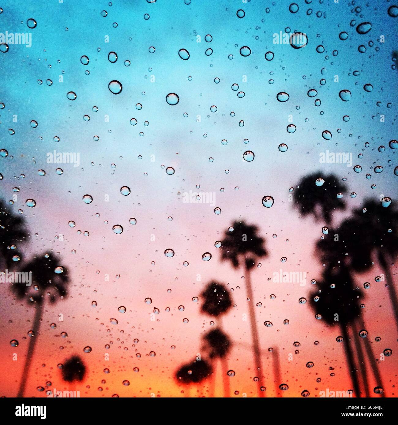 Tropical rainy sunset in southern Orange County. Stock Photo