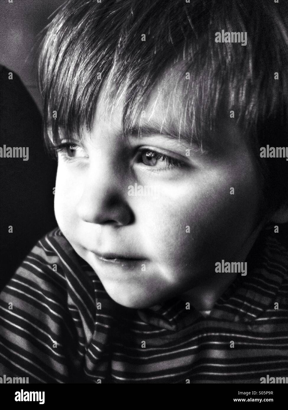 Young Caucasian toddler boy portrait. - Stock Image