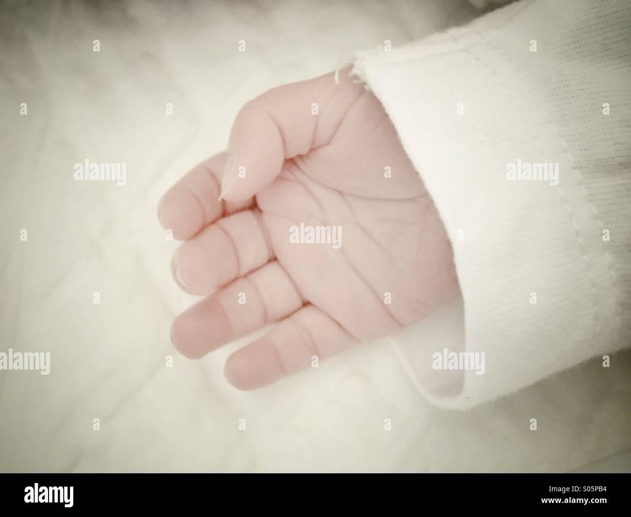 Newborn's hand - Stock Image