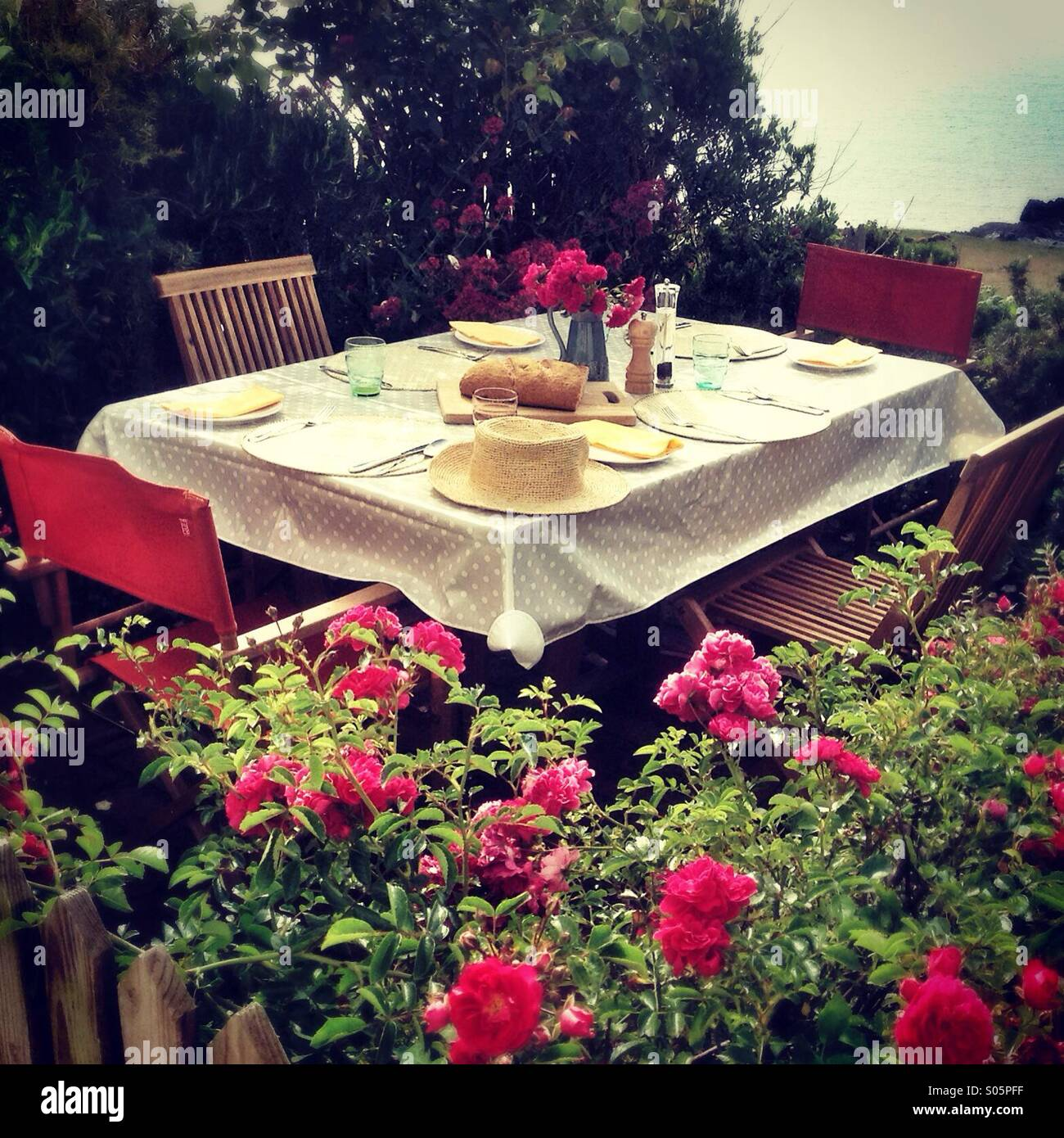 Table set for tea on a little patio with roses Stock Photo