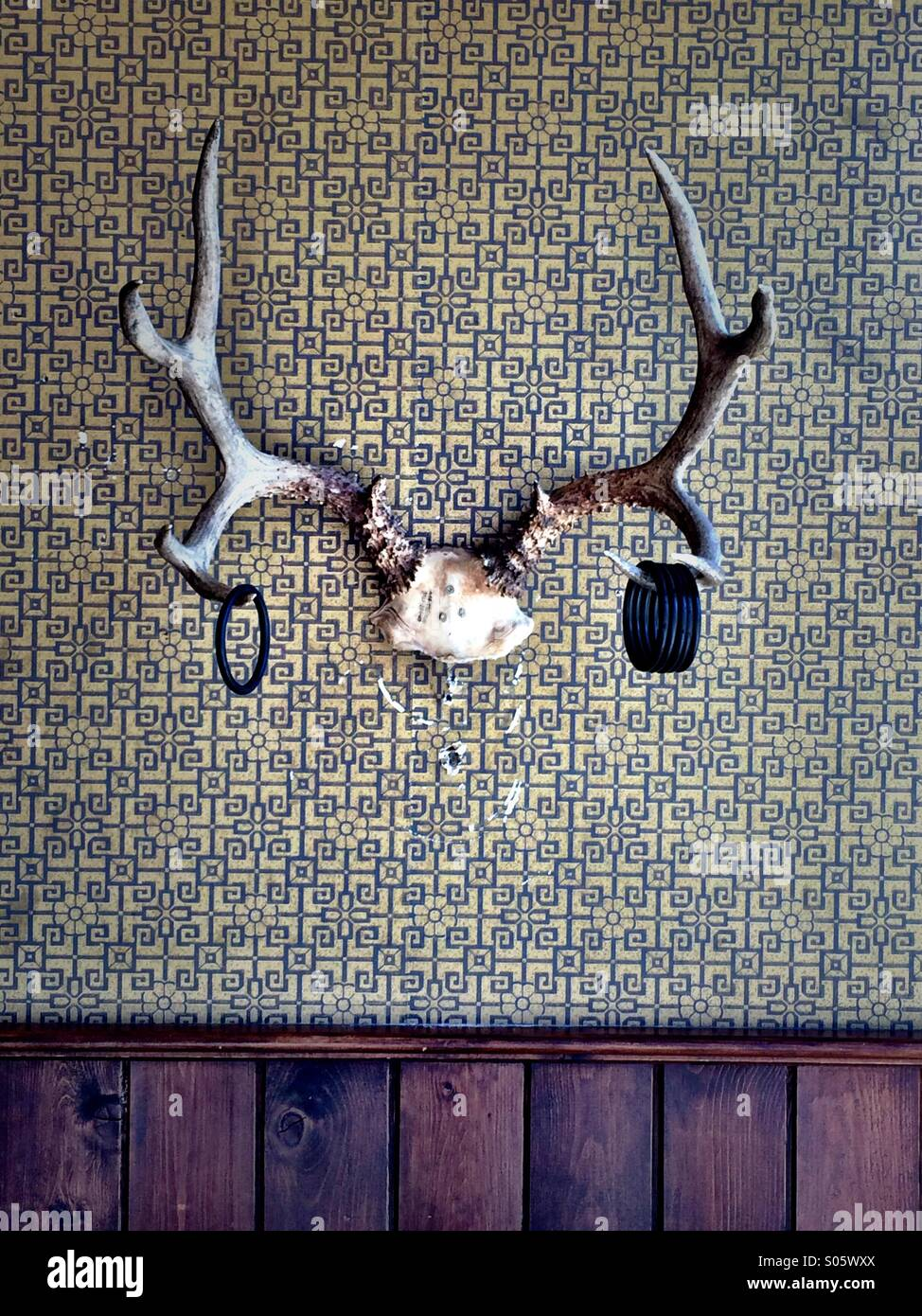 Deer antlers used for ring toss game in turn of the century arcade. - Stock Image