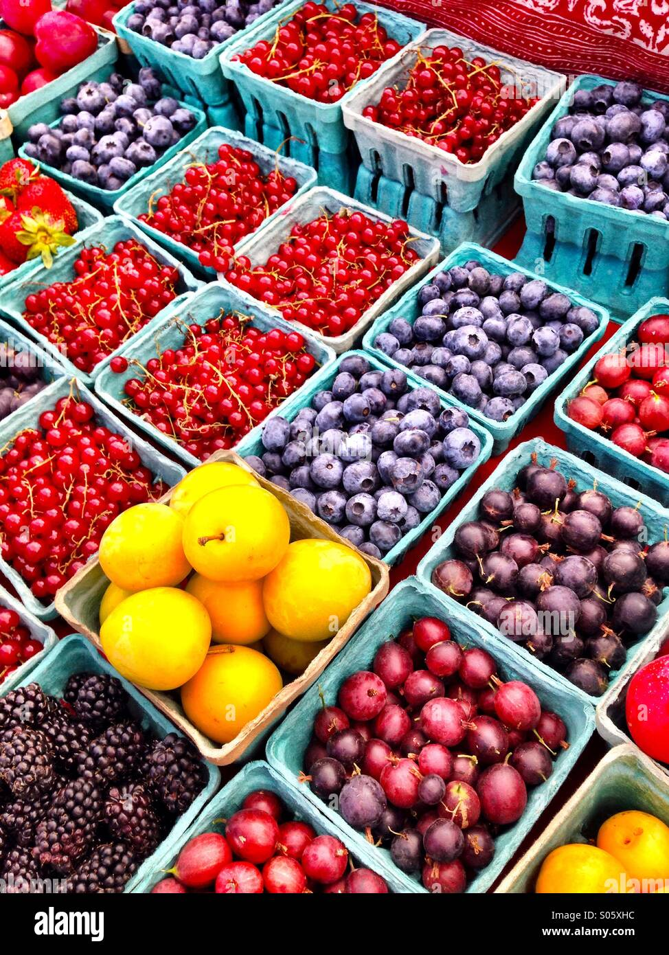 Summer fruit at farmers market Stock Photo