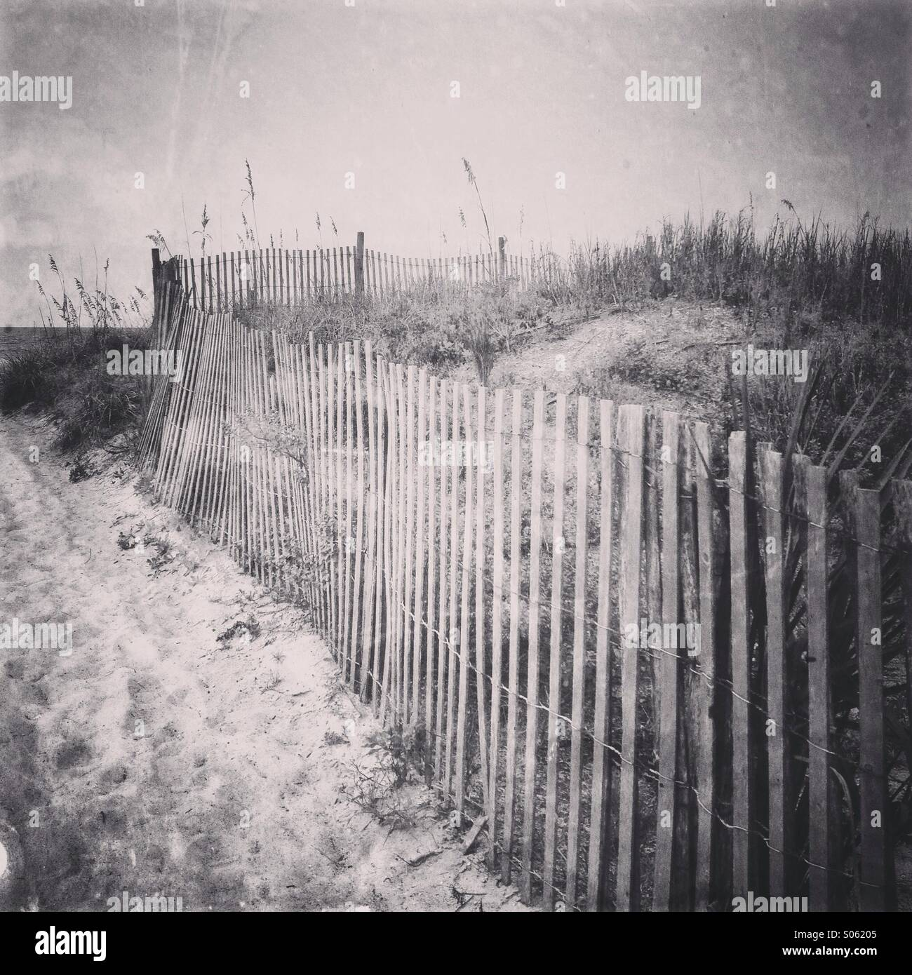 An old wooden beach fence runs along the sand dunes - Stock Image
