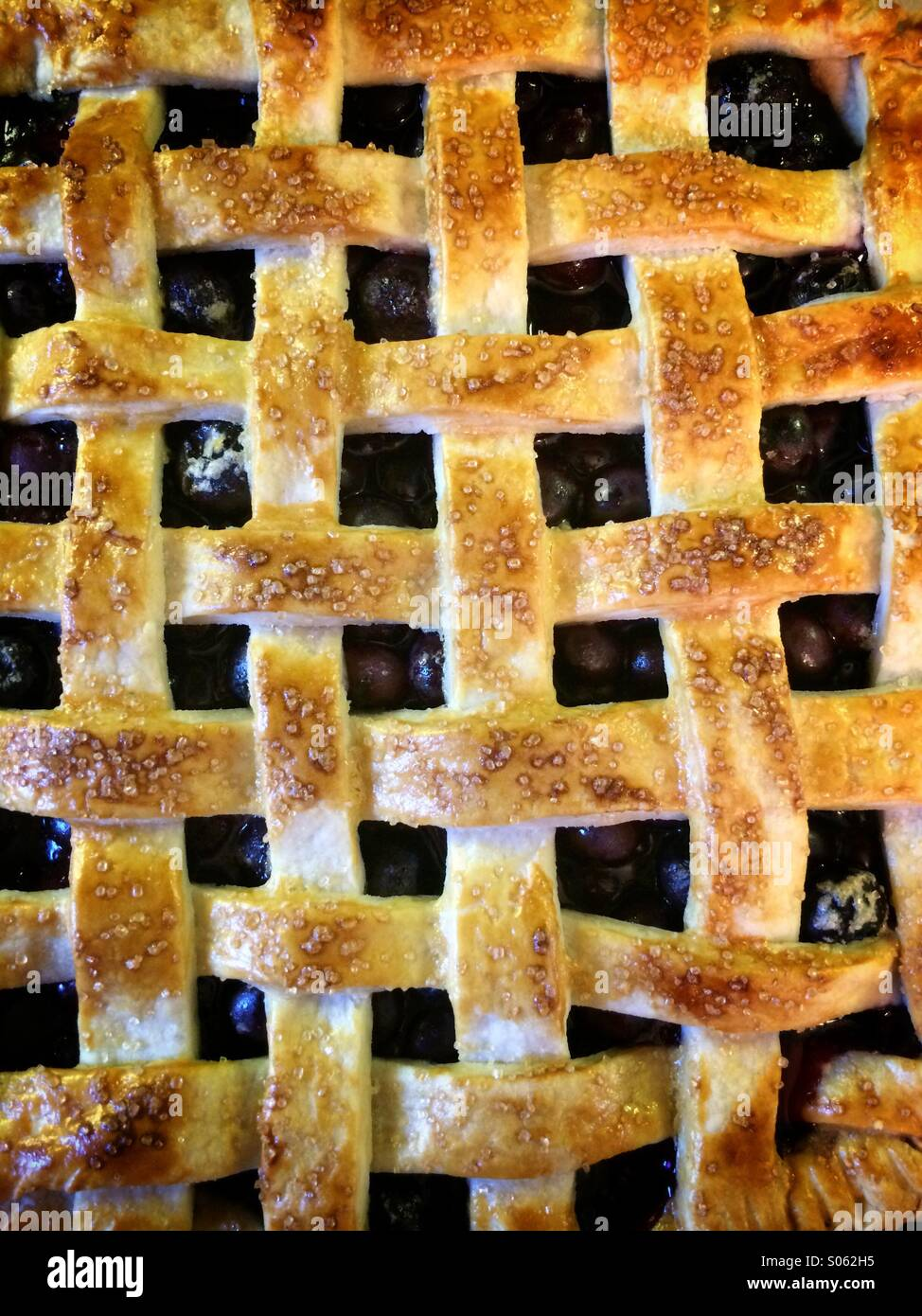 Top view of a lattice work blueberry pie - Stock Image