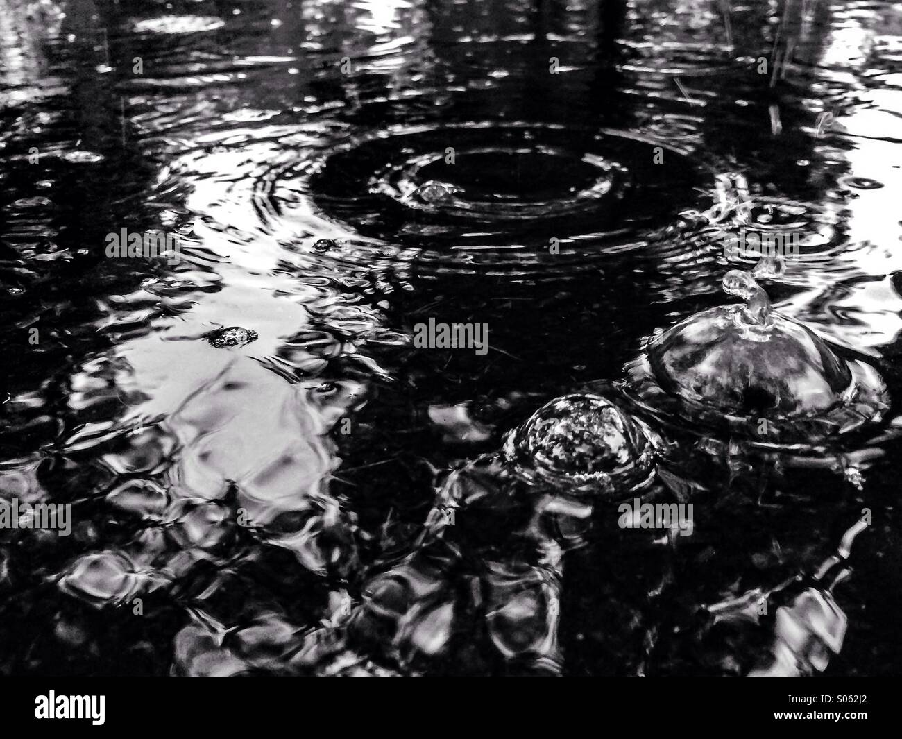 Rain puddle with bubbles - Stock Image