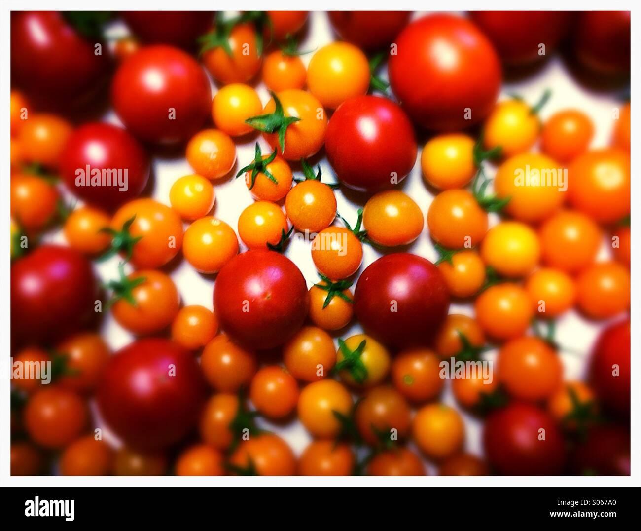 Tomato yum - Stock Image