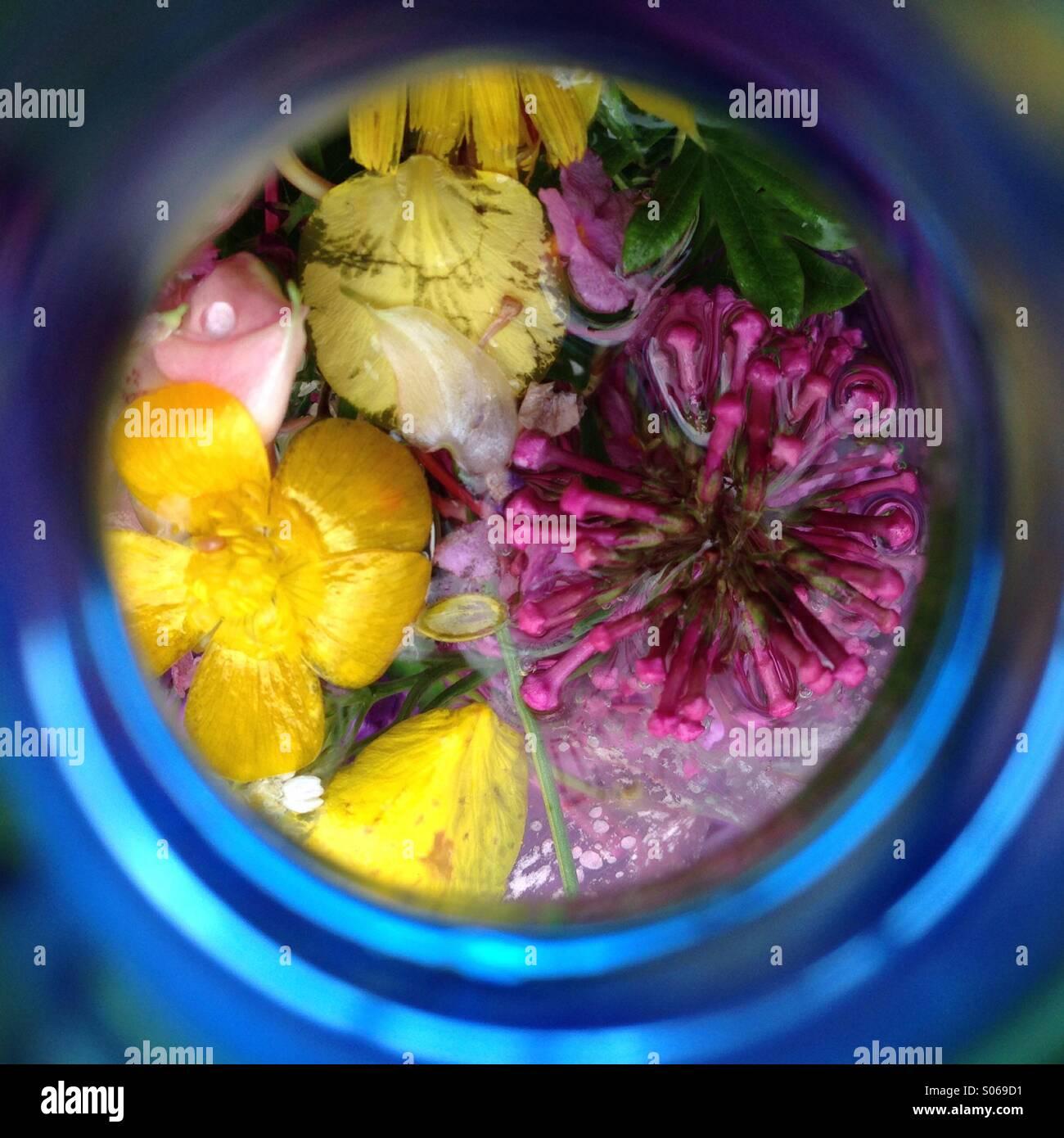 Blüten in der Flasche - Stock Image