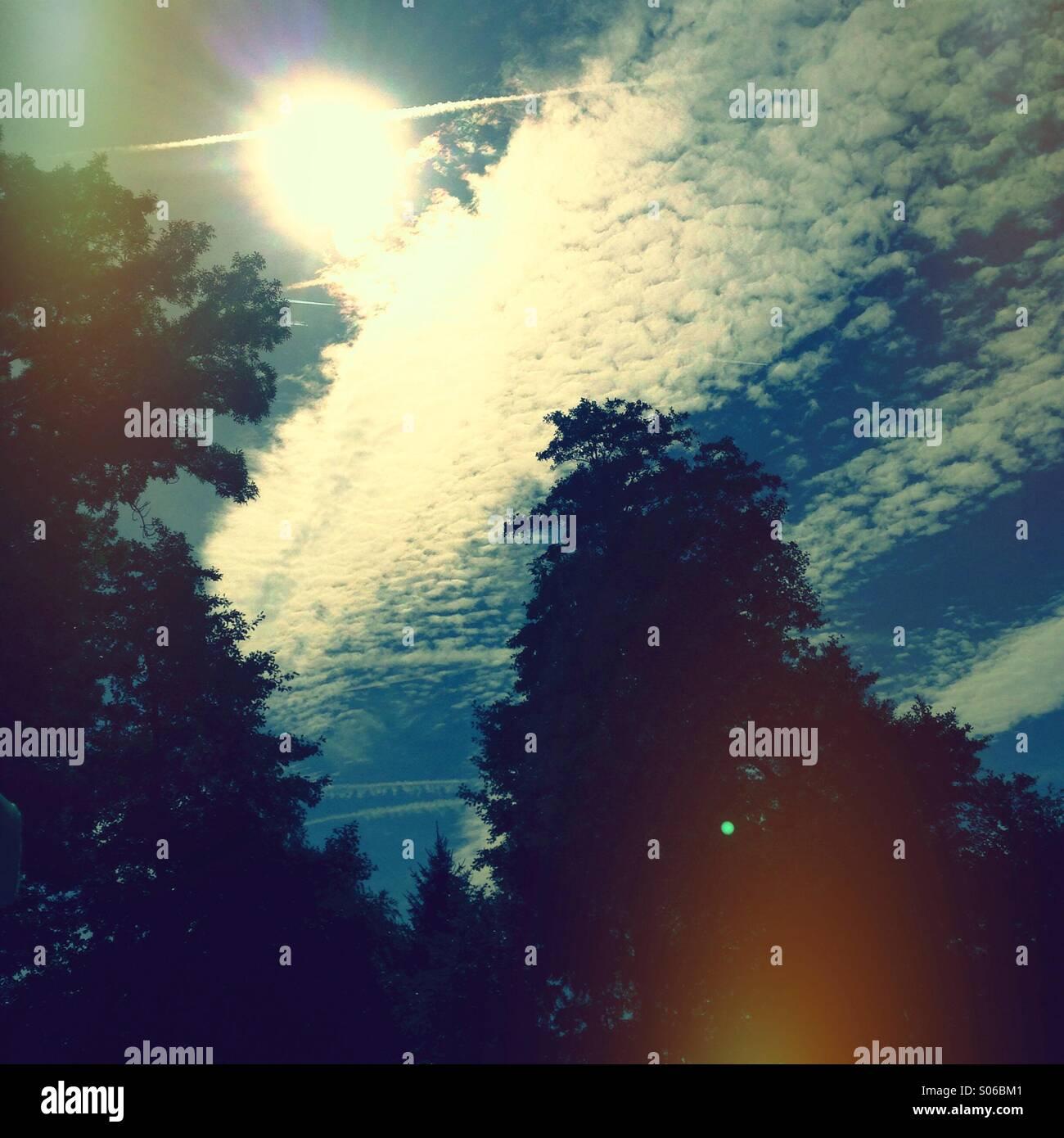 In die Sonne - Stock Image