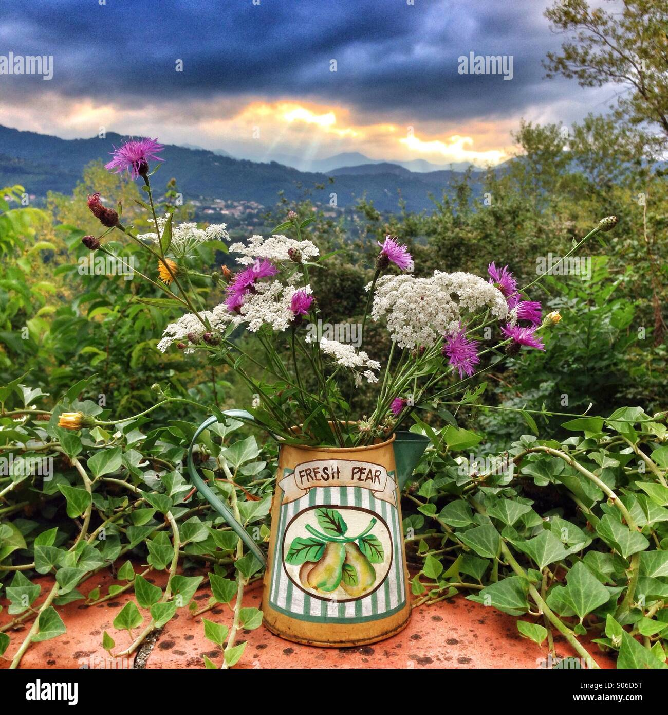 Vase of flowers on terrace as storm approaches in the Garfagnana, Tuscany, Italy Stock Photo