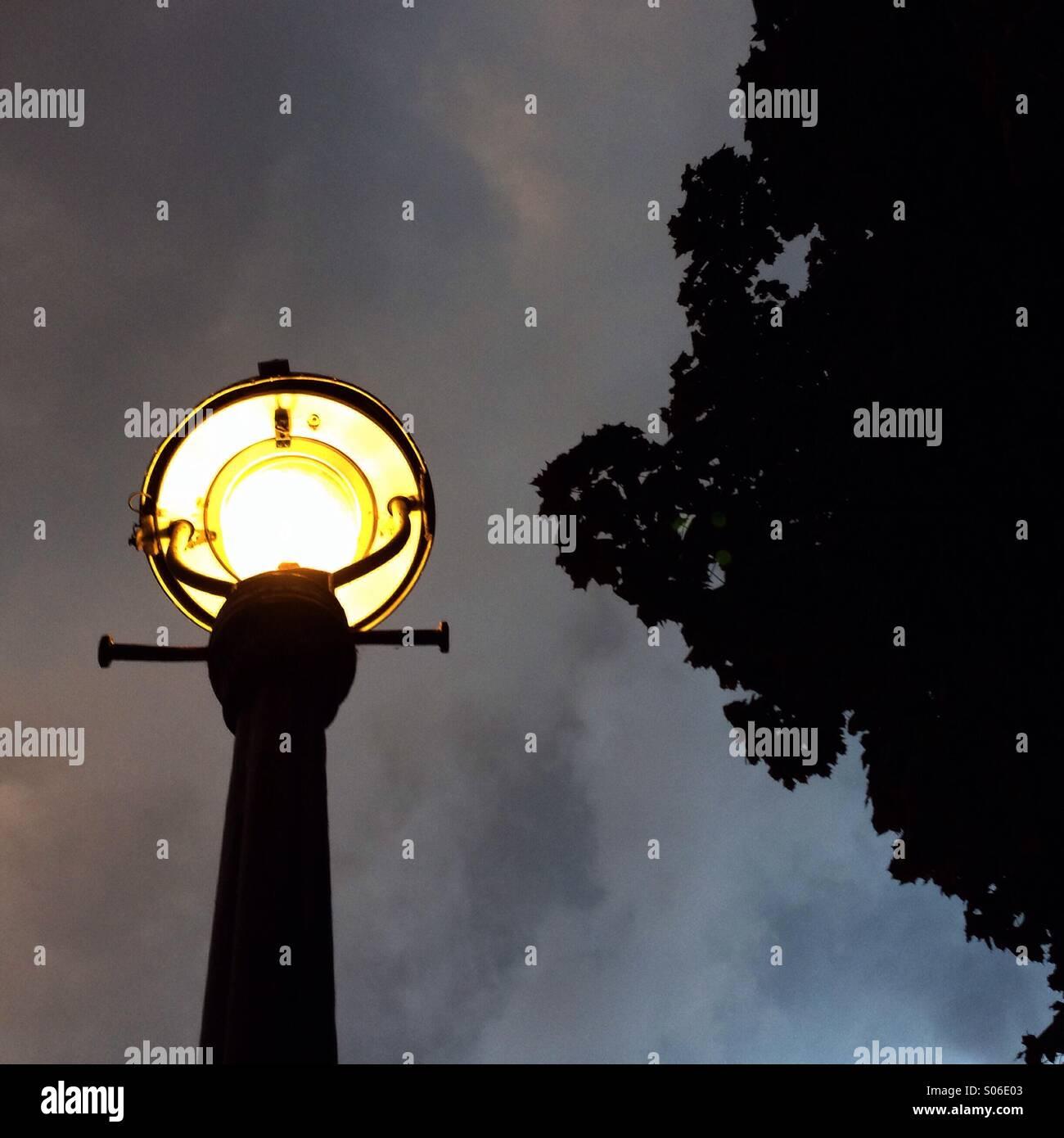 Straßenlaterne am Abend - Stock Image