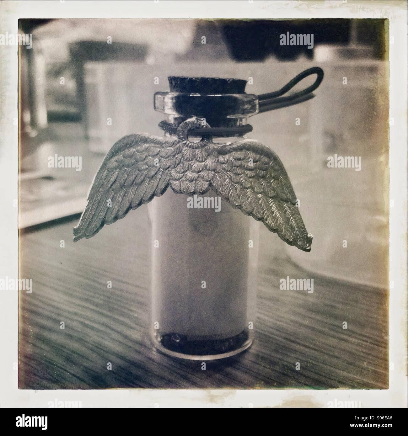 Angel wings - Stock Image