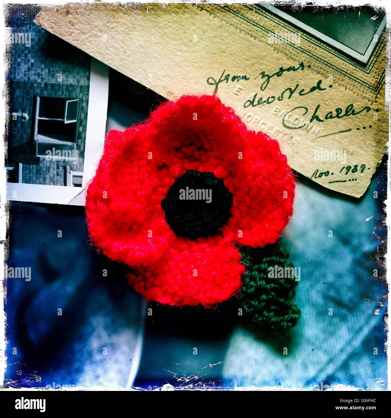 A red poppy amidst old photos - Stock Image