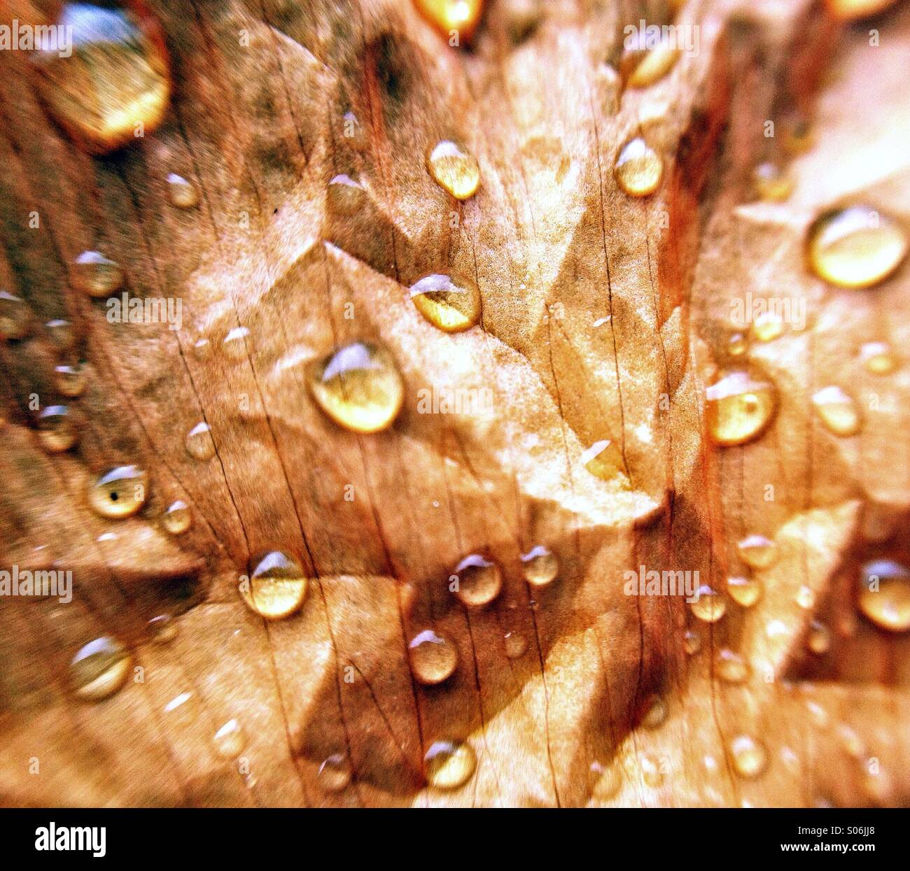 Water droplets texture - Stock Image