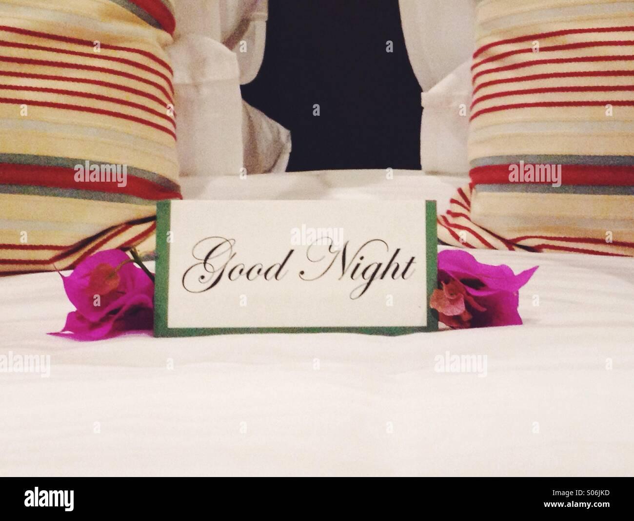 Good Night - Stock Image