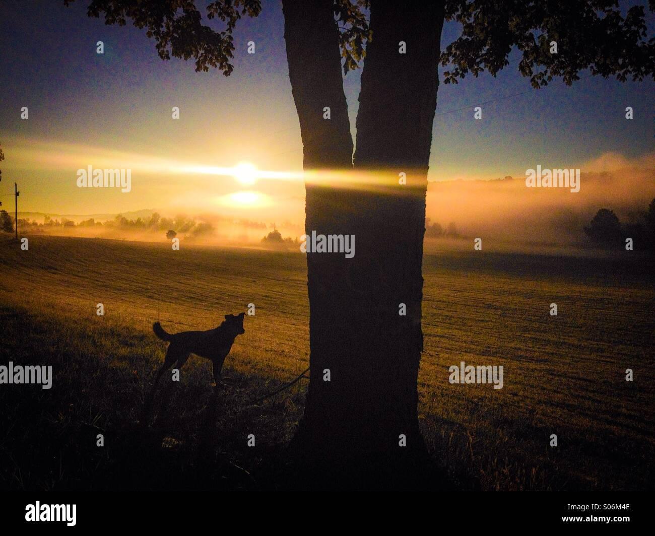 Mystic sunrises - Stock Image