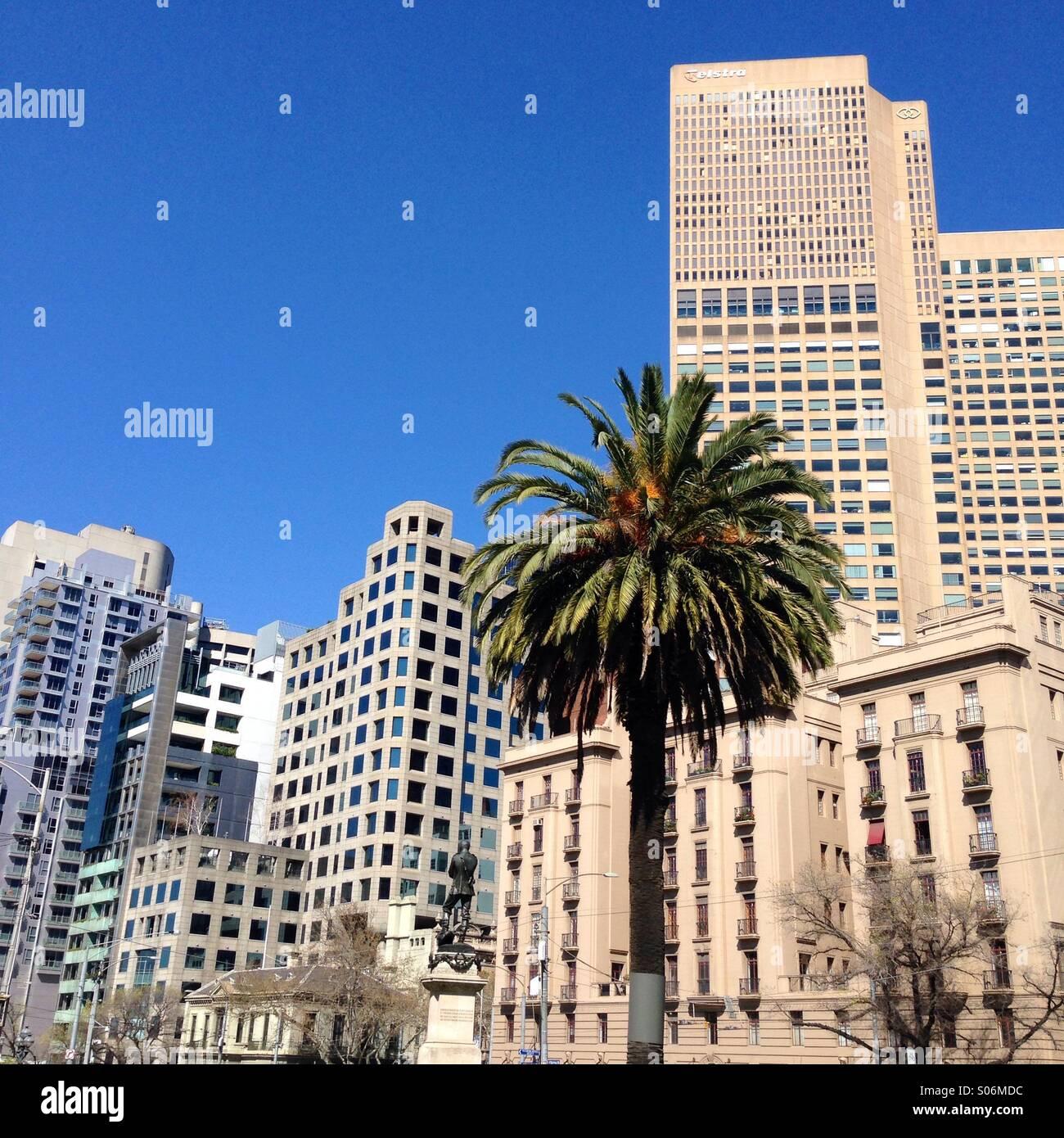 Melbourne city skyline with Palm tree on sunny day Stock Photo
