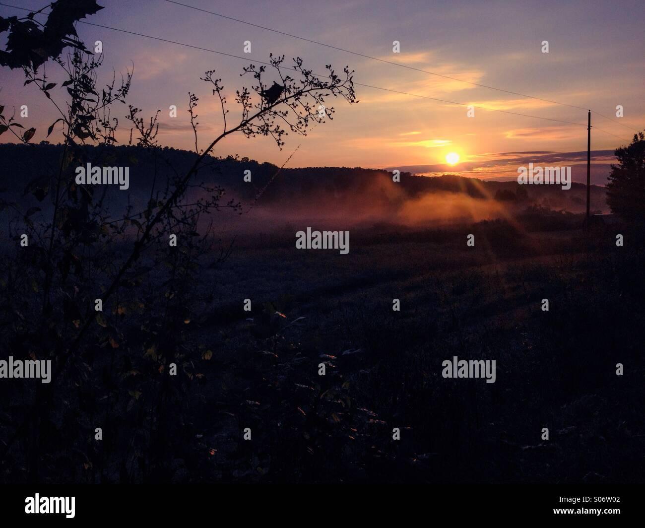 Mystical autumn mornings - Stock Image