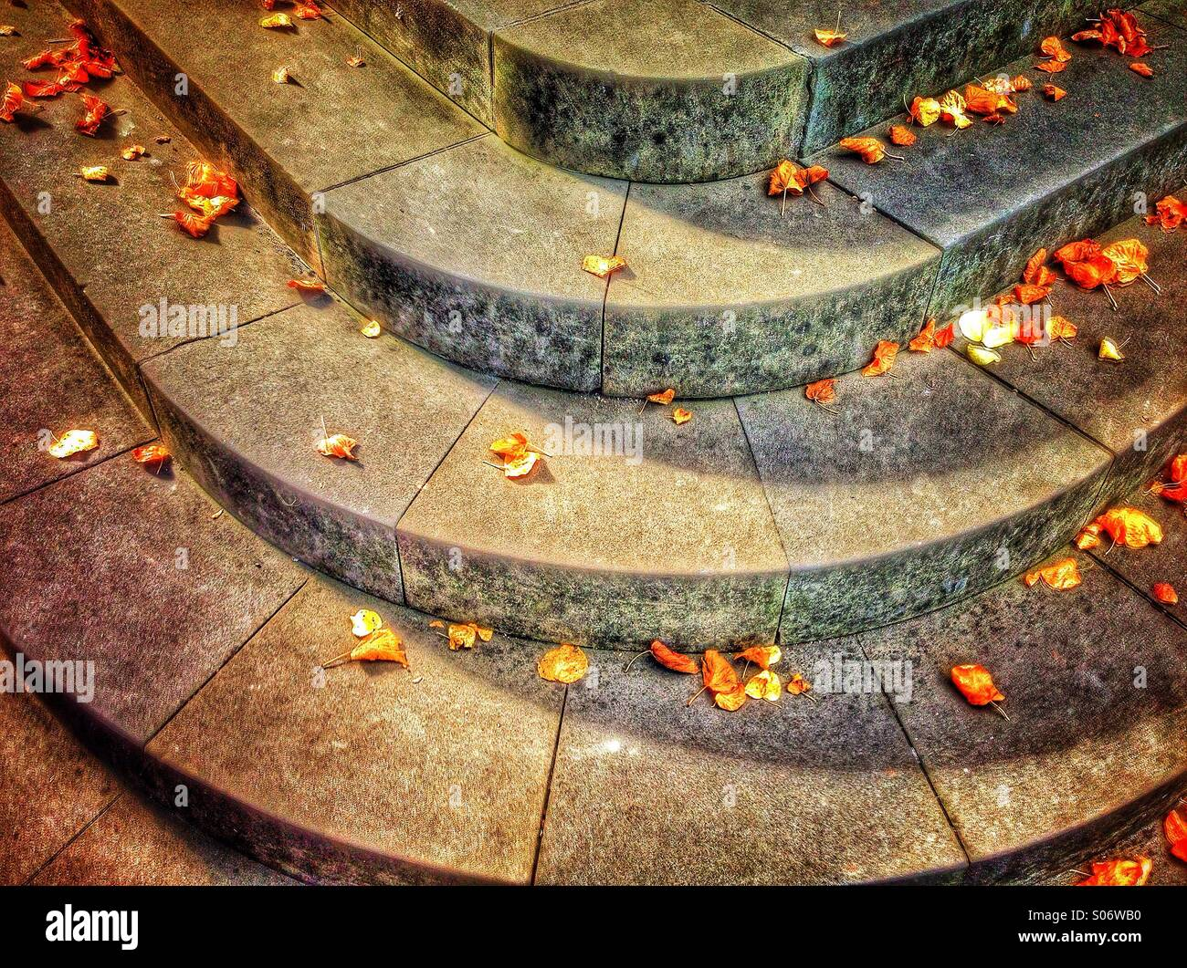Autumn leaves and steps - Stock Image