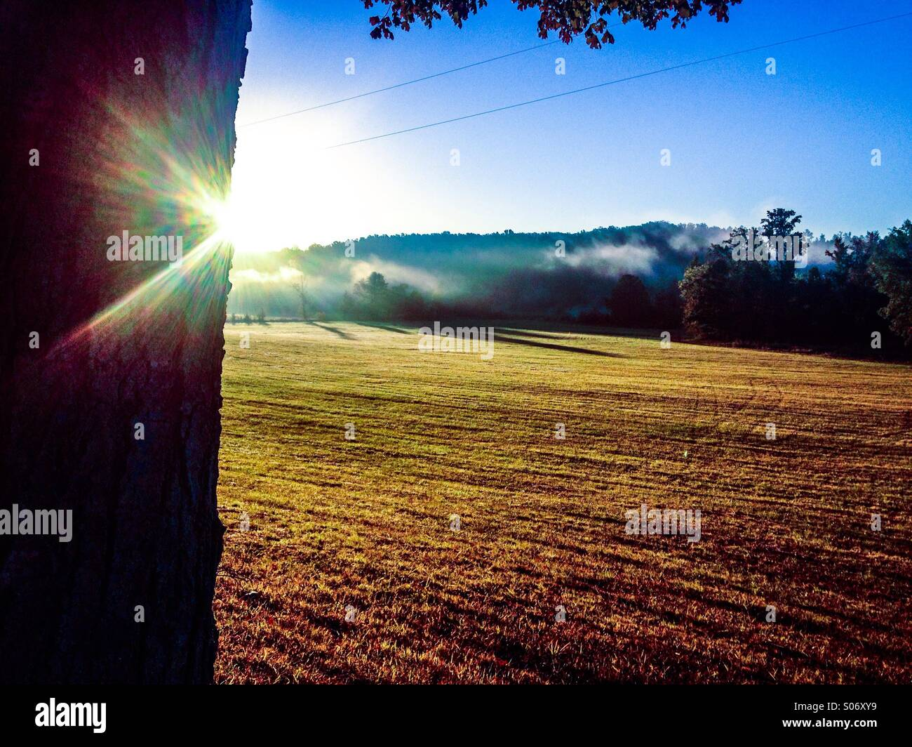 Colorful mornings - Stock Image