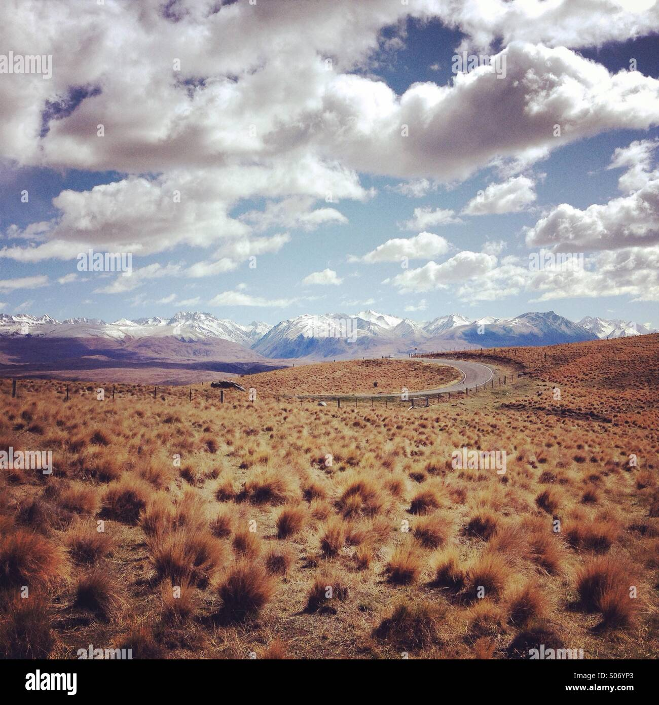 Grasslands in New Zealand with a mountain range in the background - Stock Image