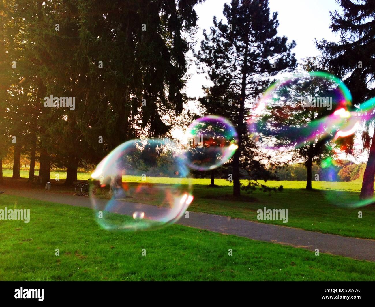 fliegende Seifenblasen - Stock Image