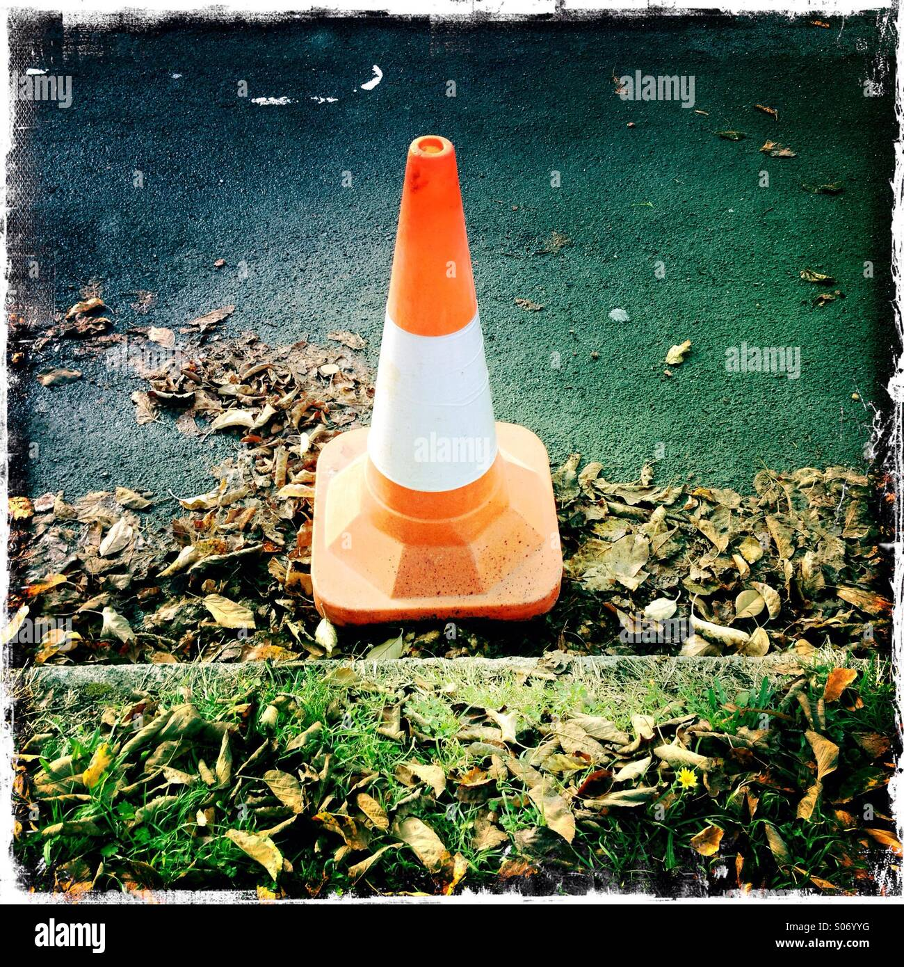 Traffic cone on Autumn road - Stock Image
