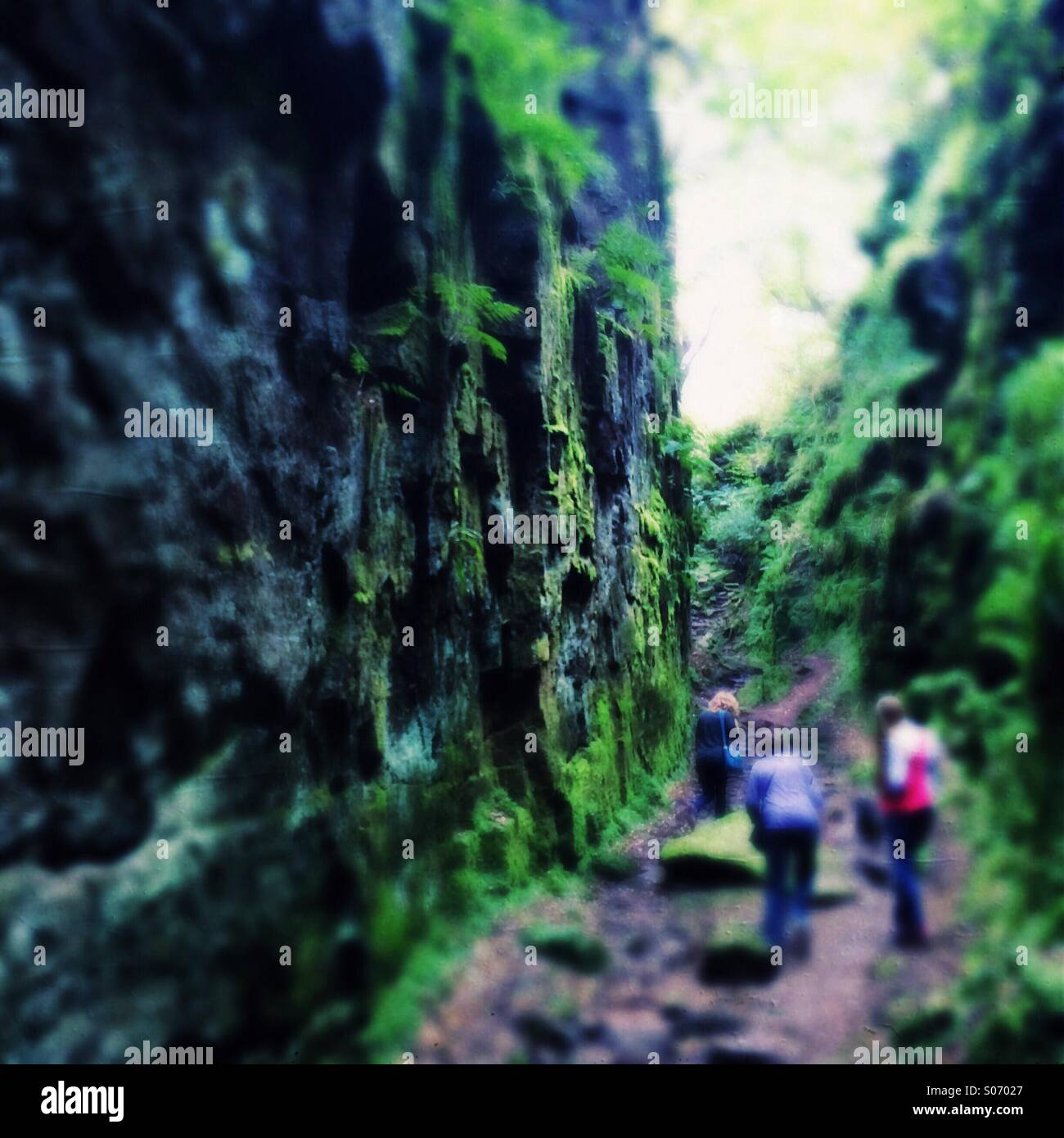 Three people in a green rocky gorge - Stock Image