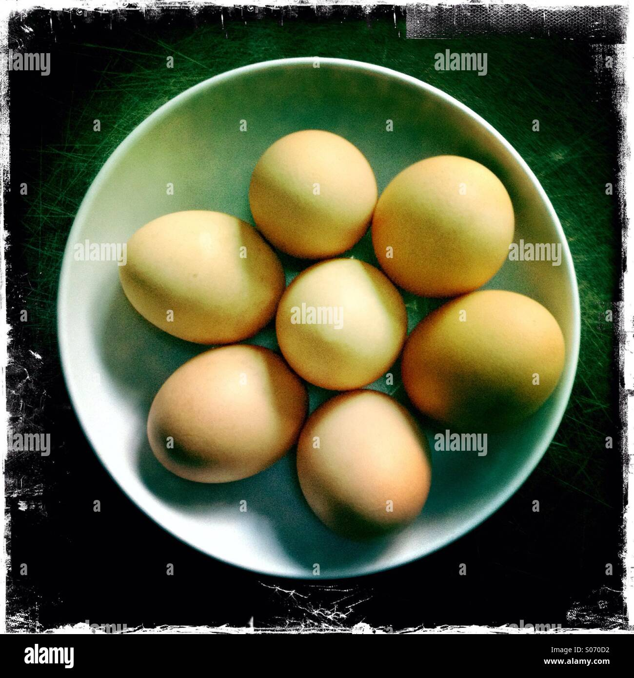 Bowl of hens eggs - Stock Image