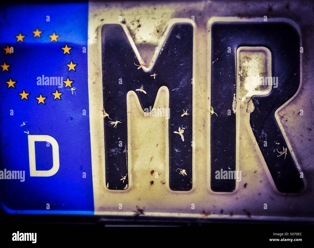 German license plate. Mr germany vehicle plate. Marburg Biedenkopf, Hessse, Germany, Europe - Stock Image