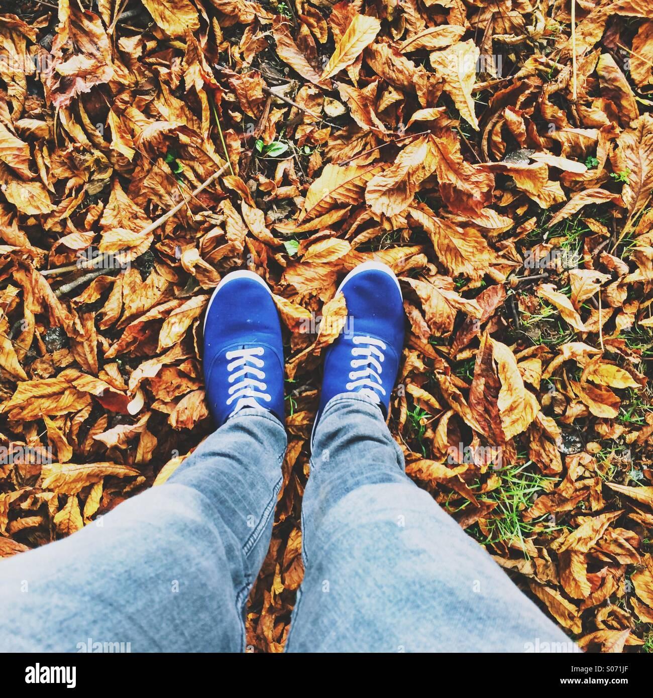 Walking feet on fallen autumn leaves - Stock Image