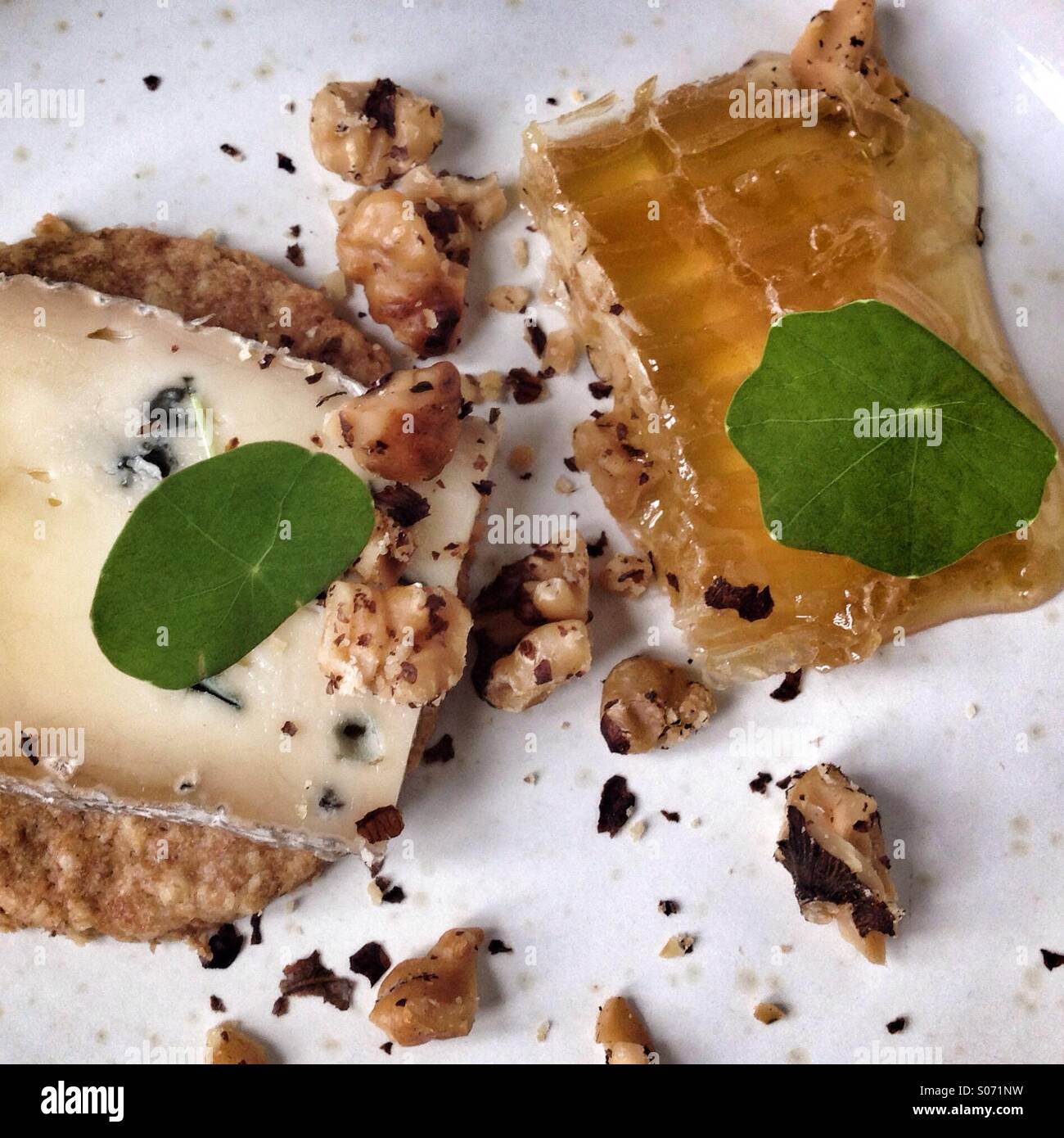 Blue cheese and honeycomb for dessert dish Stock Photo