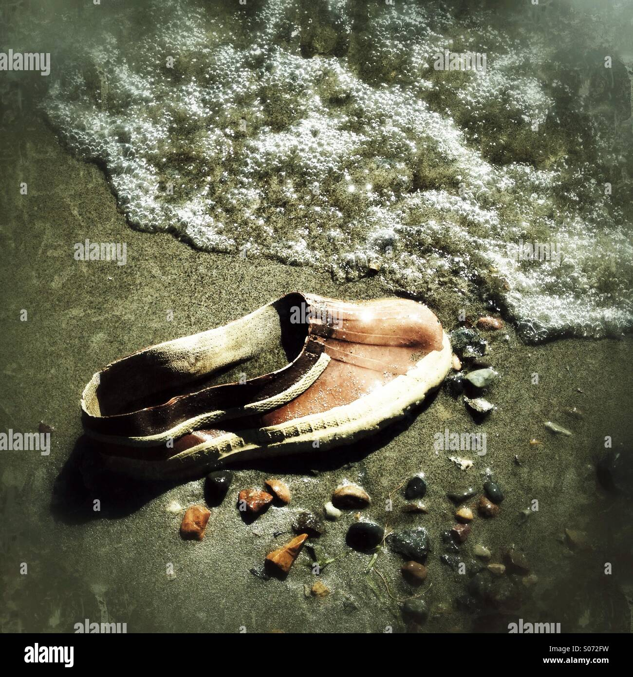 Shoe - Stock Image