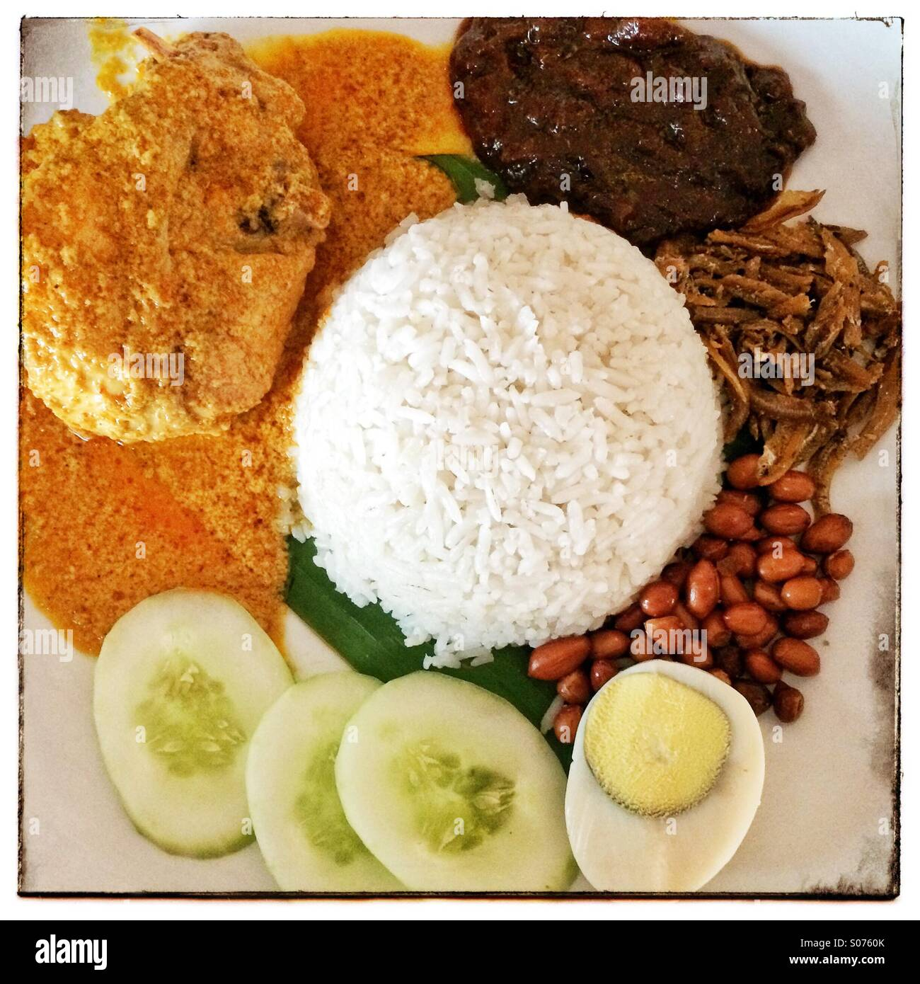 Malaysian Nasi Lemak coconut rice with curry chicken, egg, fried anchovies, cucumber, peanuts and sambal - Stock Image