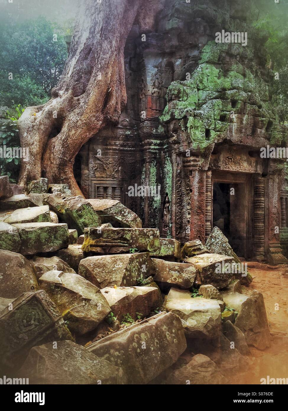 Ta Prohm Temple in Siem Reap, Cambodia, location of Lara Croft Tomb Raider movie - Stock Image
