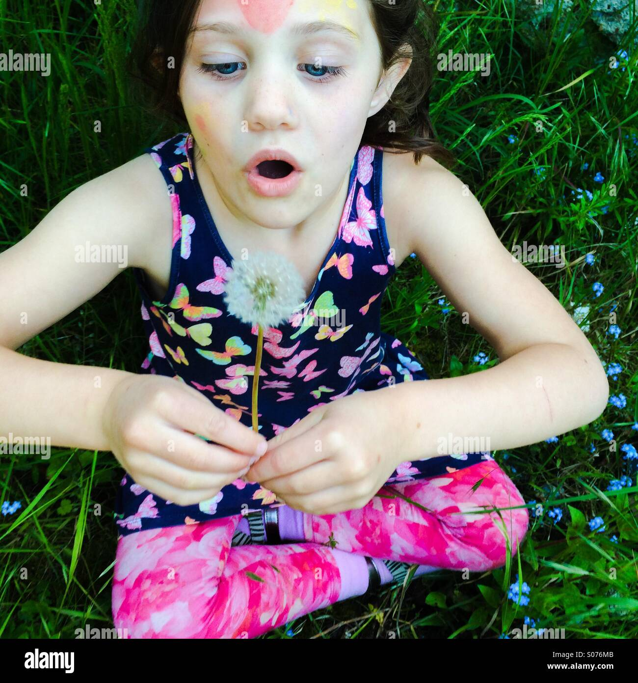 Five year old girl blowing dandelion - Stock Image