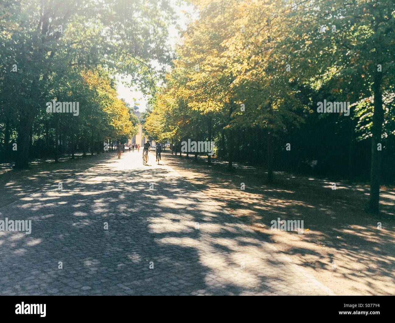 Cyclists riding through Tiergarten, Berlin, in summer, towards Brandenburg Gate Stock Photo