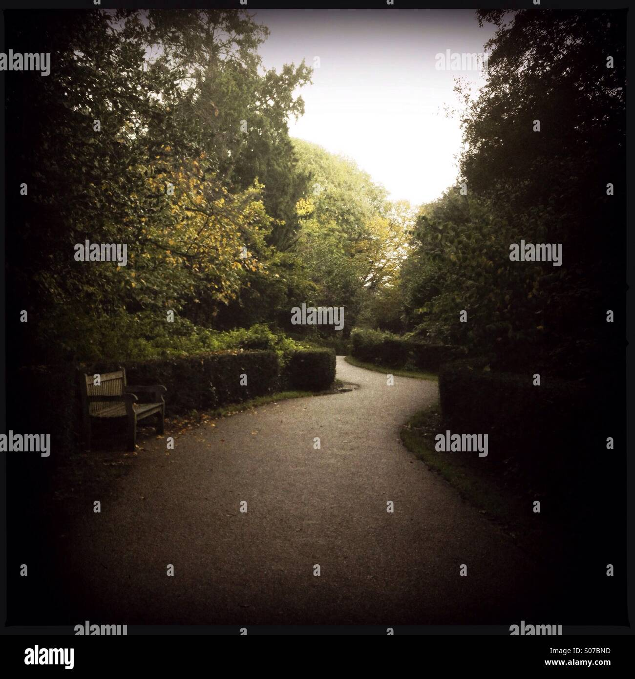 Winding pathway and bench - Stock Image