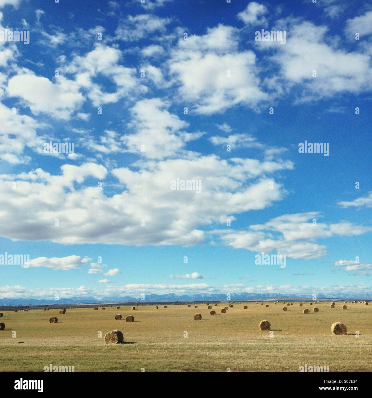 Sunny fall day in the Alberta prairies with hay or straw bales in a field with Rocky Mountains in the distance. - Stock Image