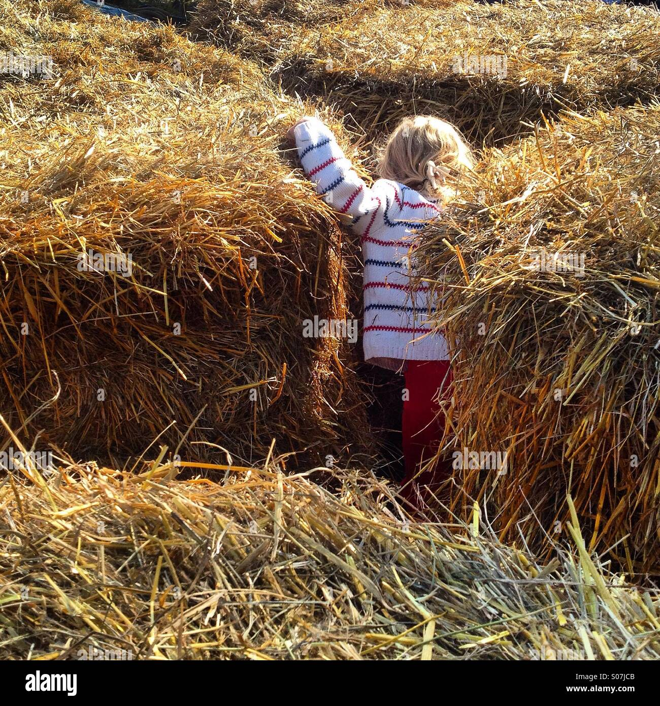 A young girl playing hide and seek in between hay bales at a traditional nordic harvest festival - Stock Image