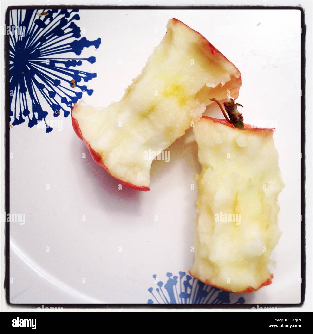 Apple cores on a decorative paper plate. Color. - Stock Image