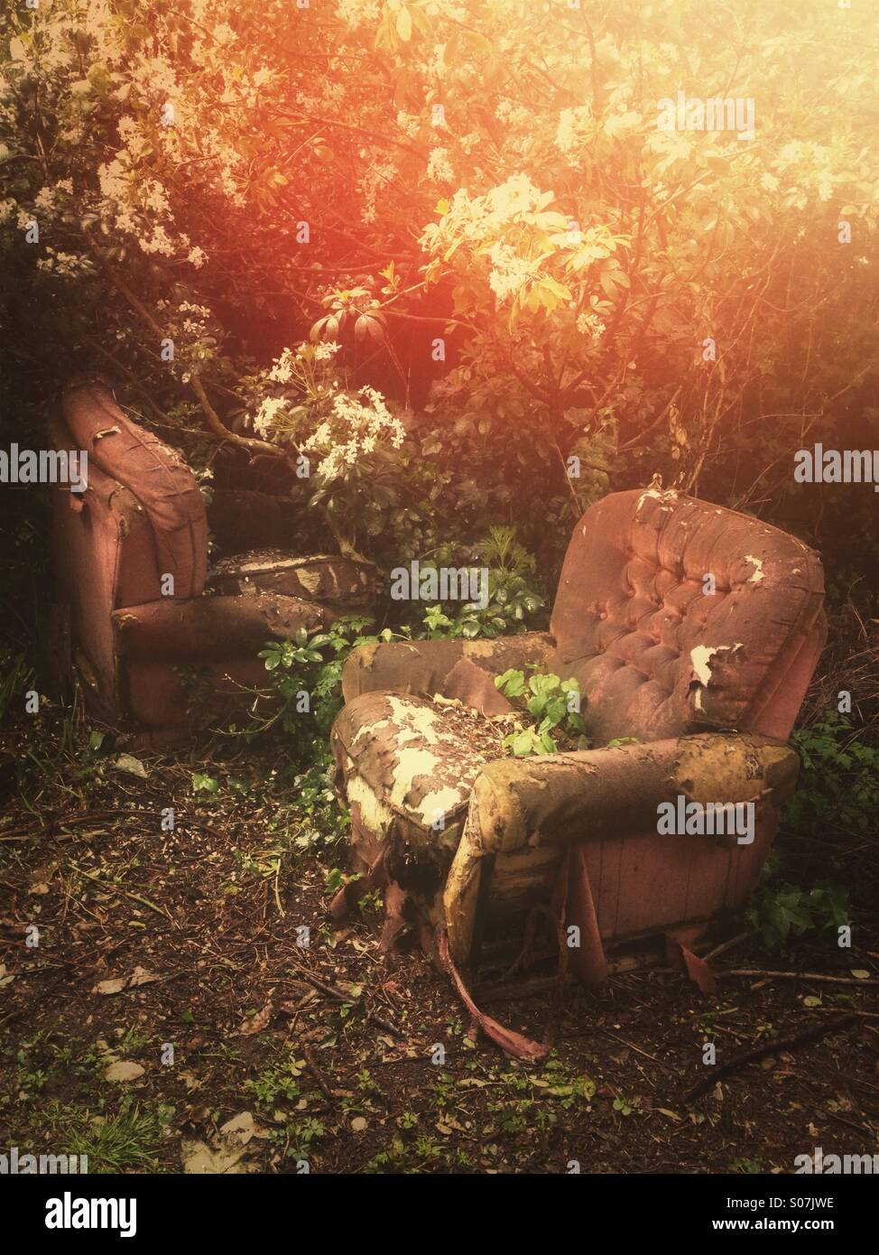 Decaying couches - Stock Image