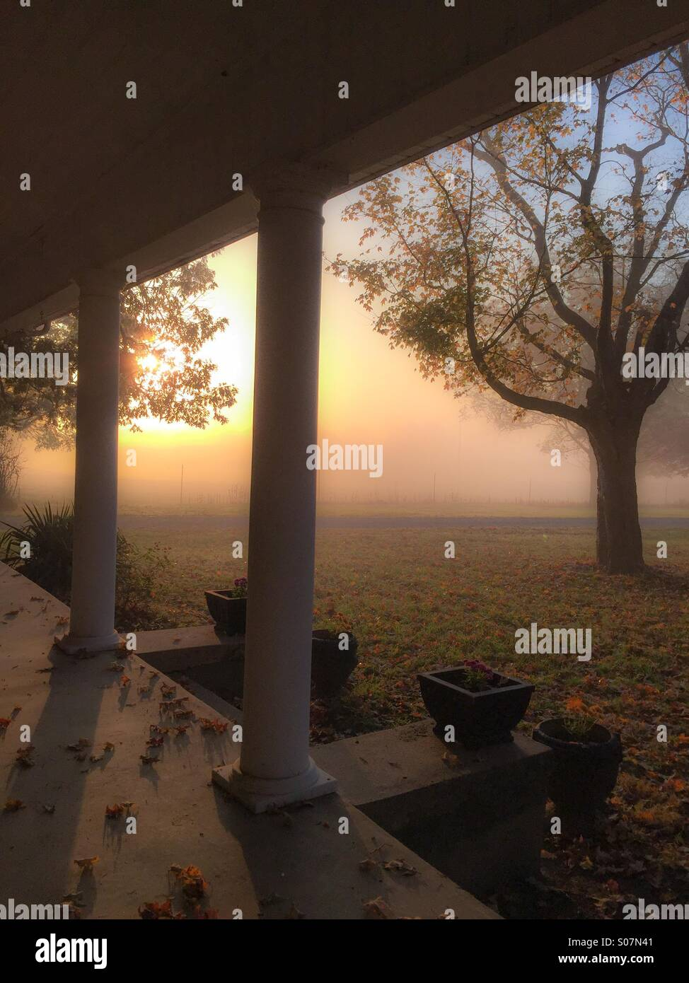 Country living accentuated by a foggy Autumn morning from the front porch. - Stock Image