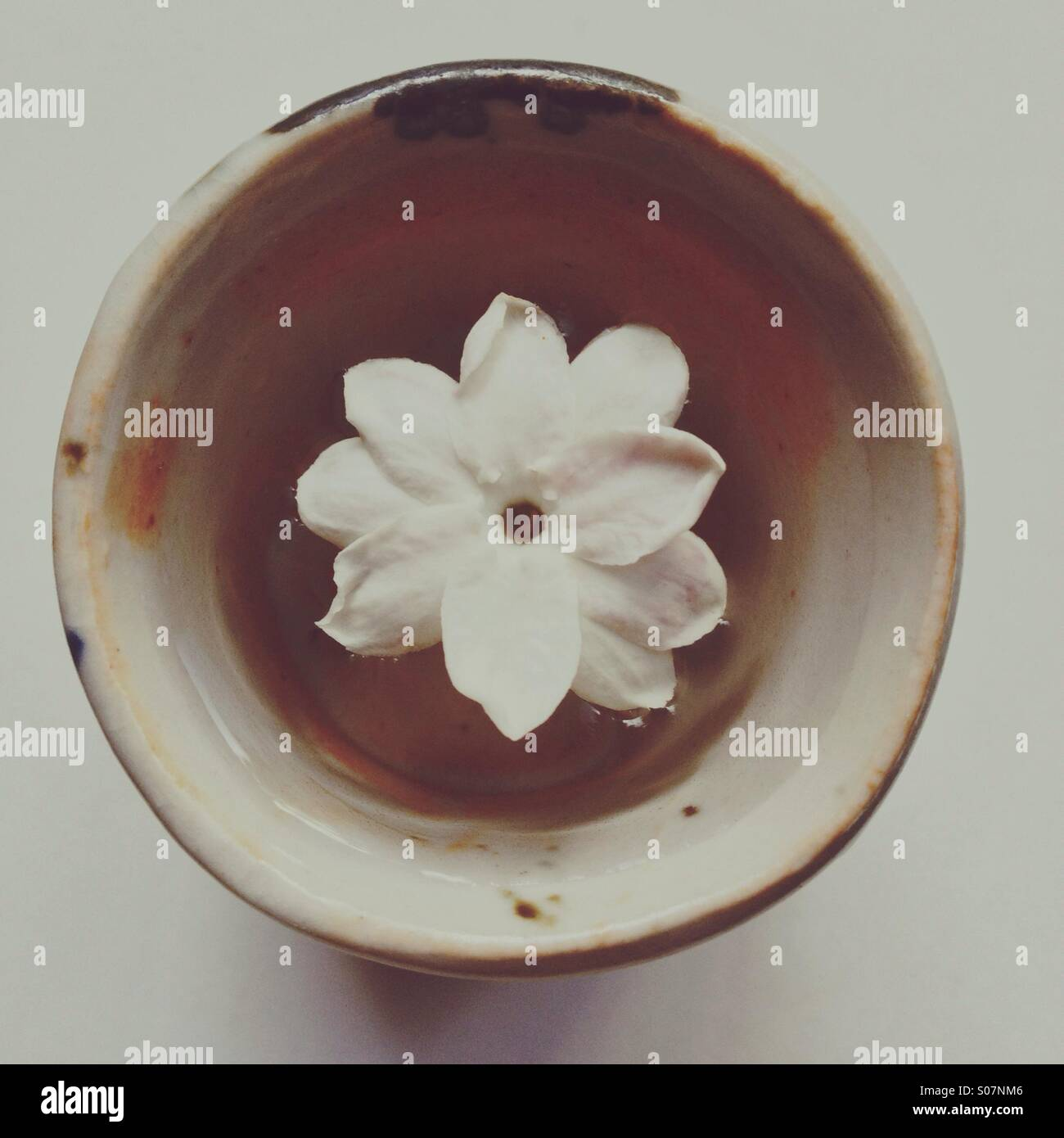 b121d58fa Minimalist photo of jasmine flower floating in tiny ceramic handmade cup