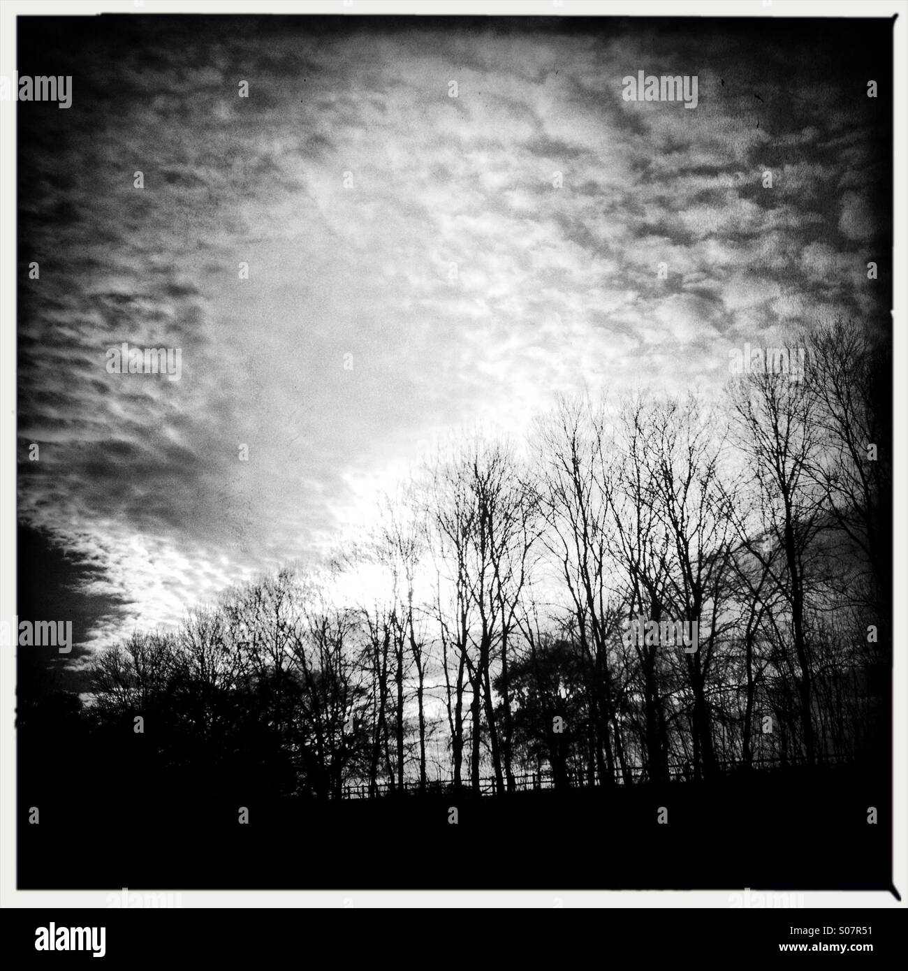 Gloomy winter view - Stock Image