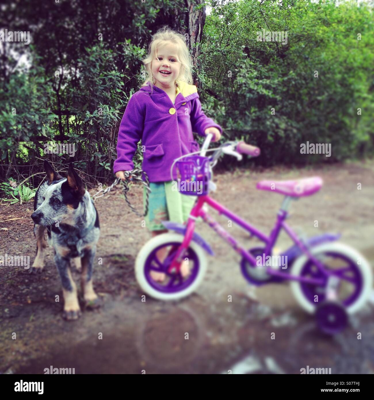 Walkabout with dog and bicycle - Stock Image
