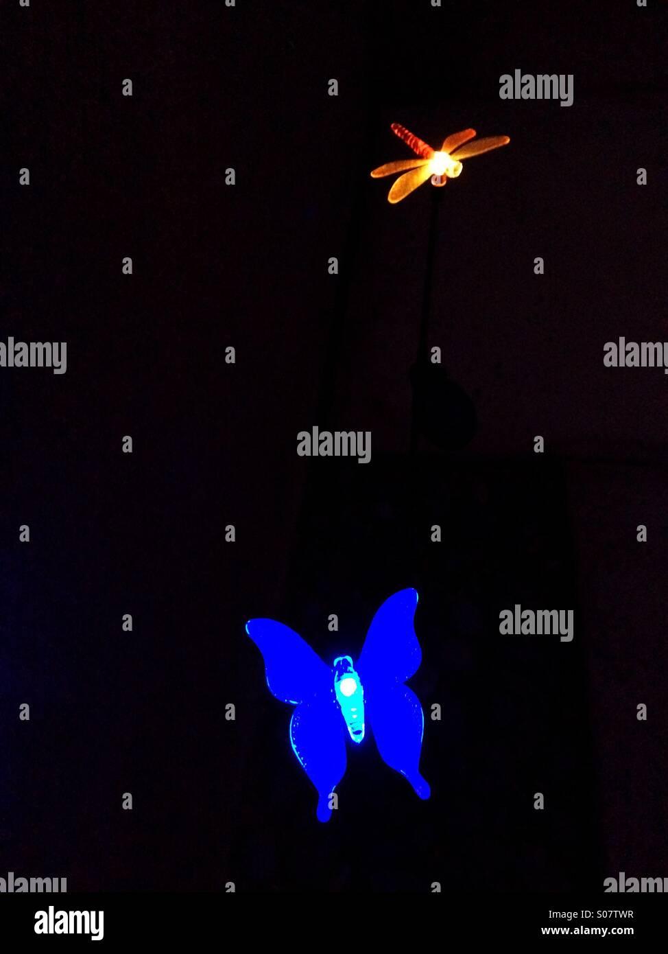 Solar powered garden lights - Stock Image