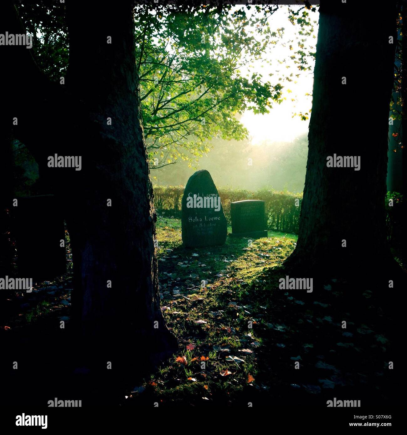 Sun rising at the cemetery - Stock Image
